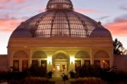Horticulture, Art and Yoga Programs are Planned at the Botanical Gardens