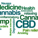 Word Cloud on a white background – CBD