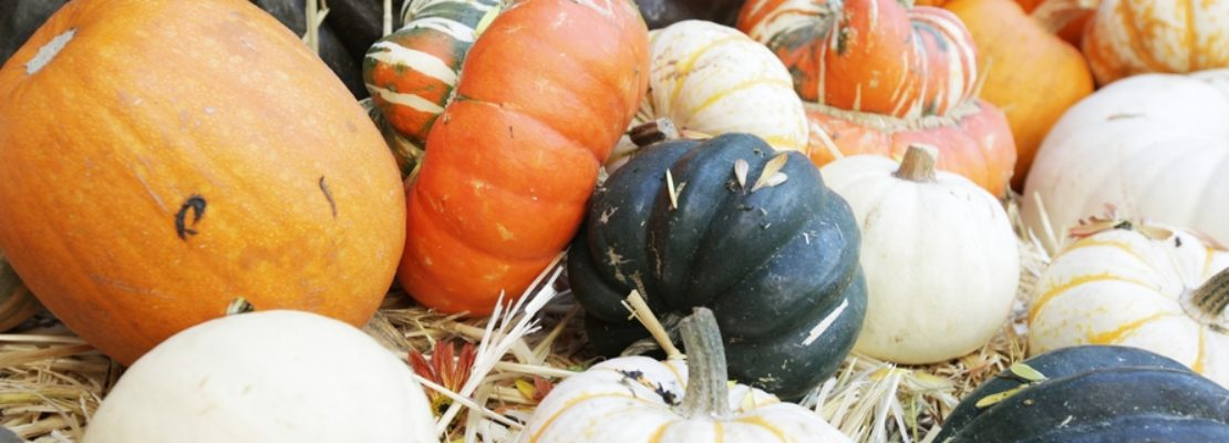 Winter Squash – Did You Know?