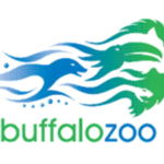 buffalo-zoo