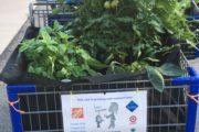 Mobile Gardening Program